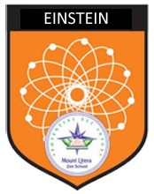 Einstein House Badge